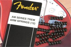 Fender Strat American Series Tremolo Arm Springs, One Dozen